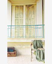 Picture of BISOU DE MME PITOU 365103