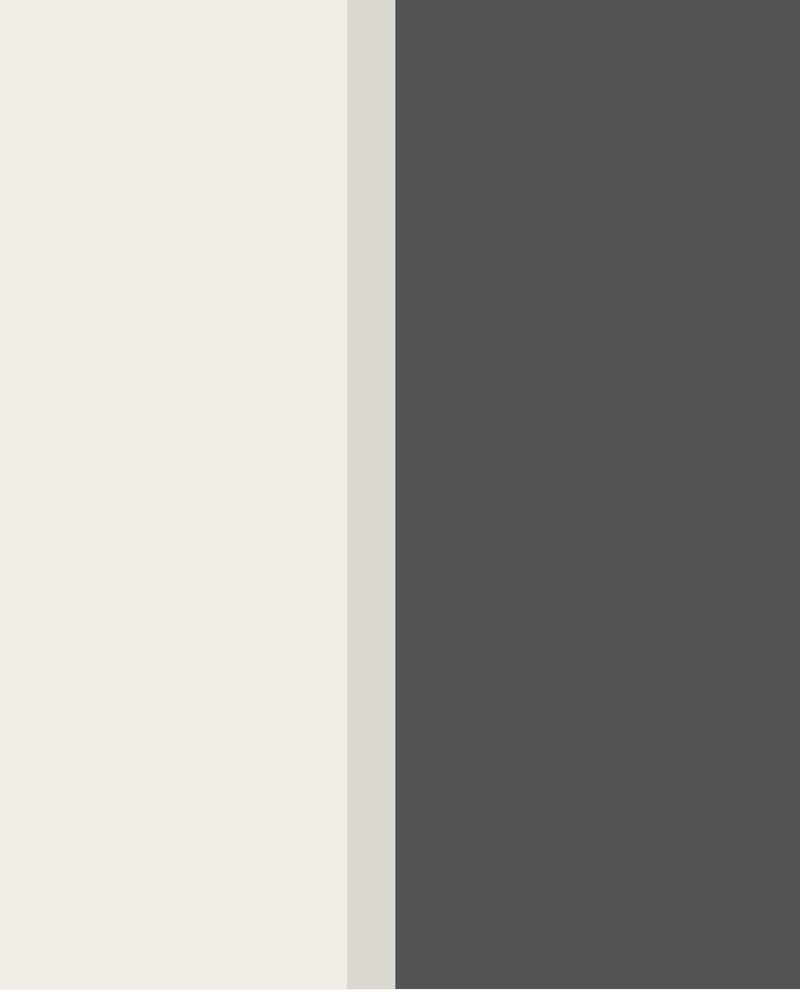 Picture of STRIPES+ 377166