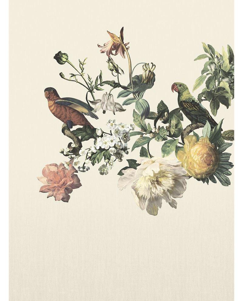 Afbeelding van MUSEUM 307401